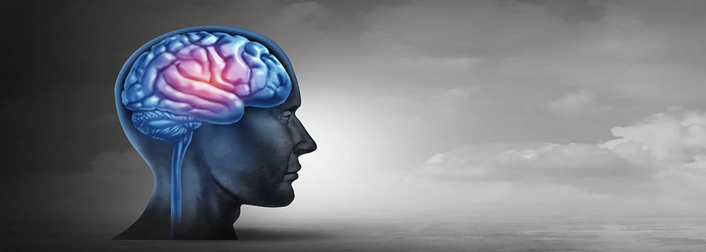 Effects of Opiates on the Brain